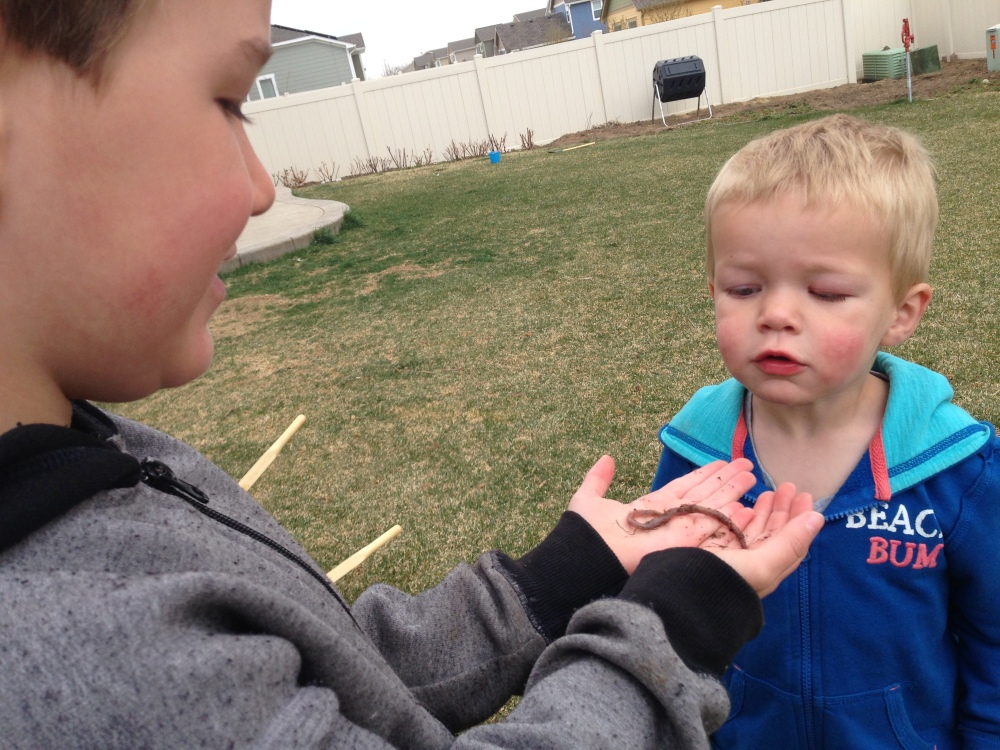 Nothing like two boys and a worm...we won't mention how much the little one cried when we put the worm back in the ground....