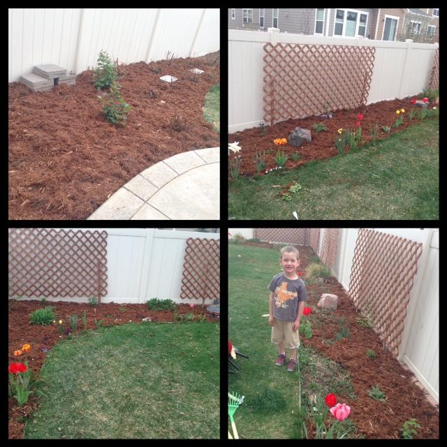 The backyard flower beds and rose garden