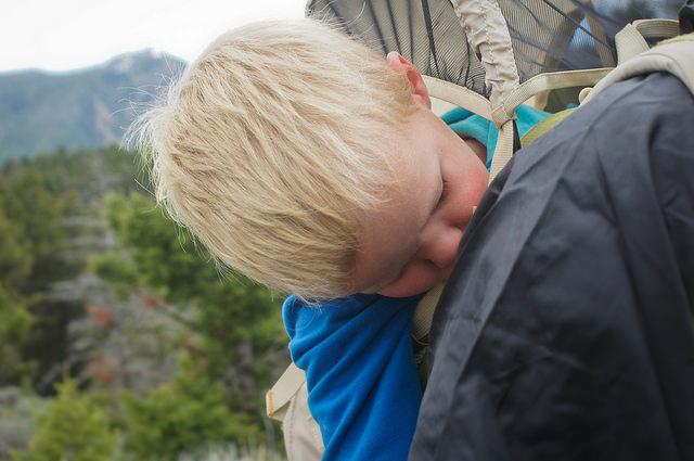 How Caedmon prefers to hike, sound asleep