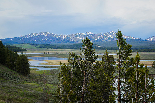 Yellowstone River Valley