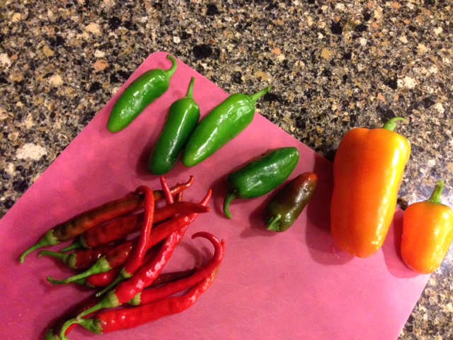 Peppers from my garden