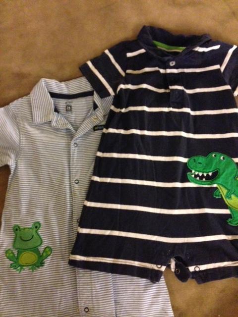 Alligator and Frog
