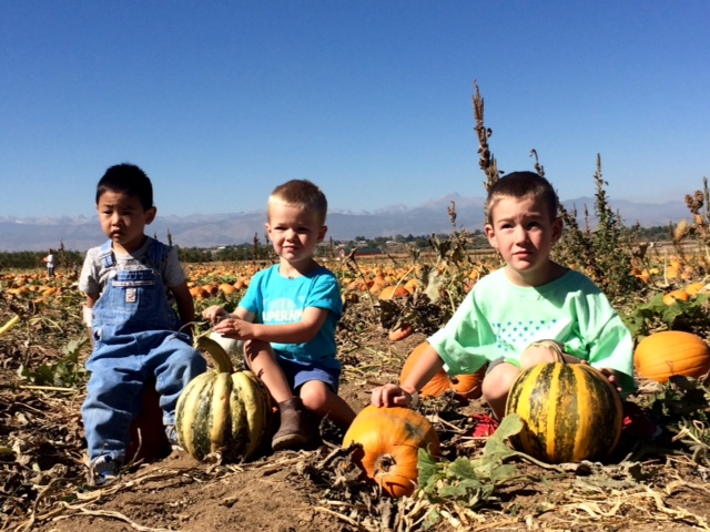 Trip to the pumpkin patch, I have no idea why no one is smiling, we had a great day