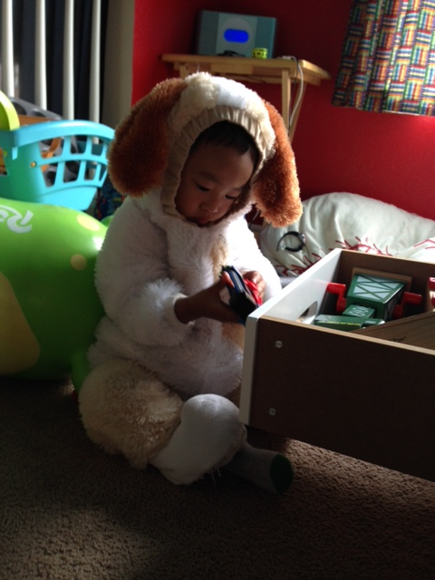 And sometimes you just need to wear a dog costume and play with trains.