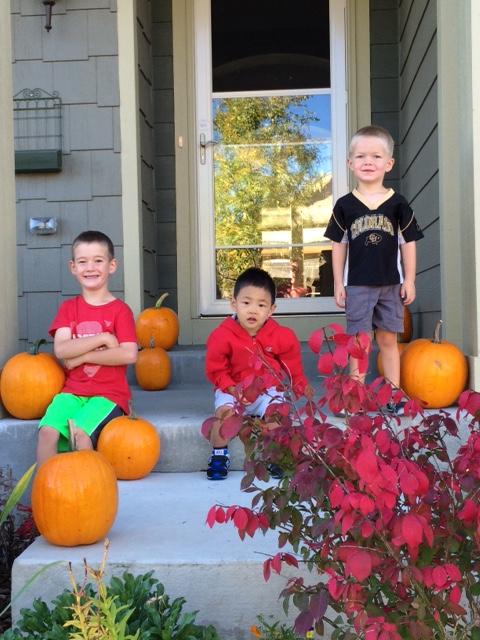 pumpkins from our garden