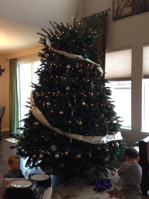 Tree decorated