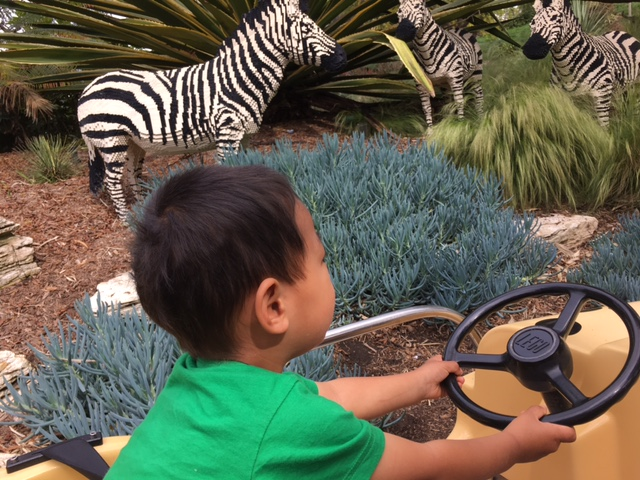 Edric was ready to drive the car....those zebras are all built out of legos